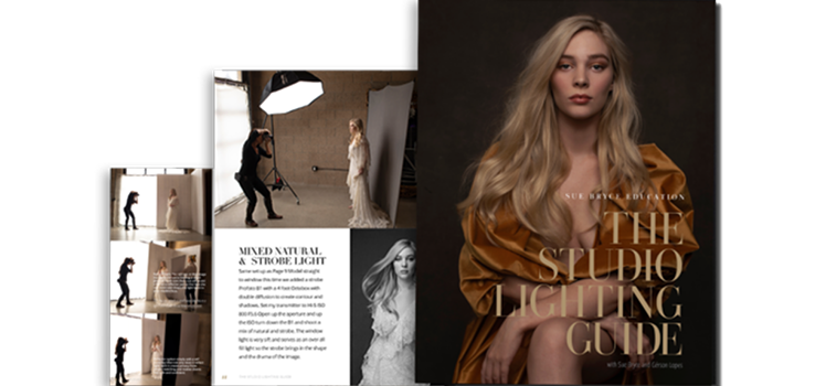The Portrait Masters - The Studio Lighting Guide