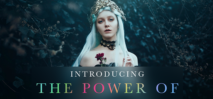 The Power of Color to Transform Your Images