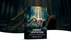 Forest Levitation